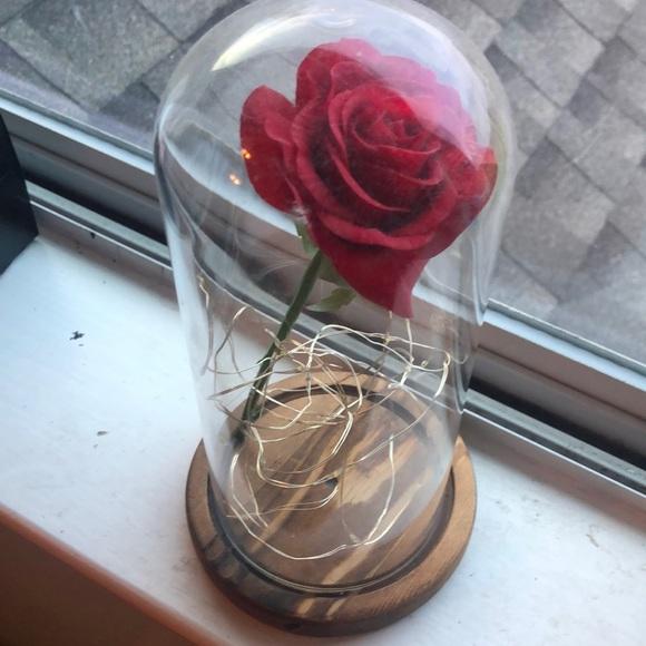 Rose in light up jar decoration